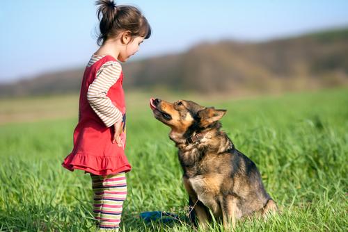 कुत्ते के काटने से बच्चों को बचाने के 8 तरीके